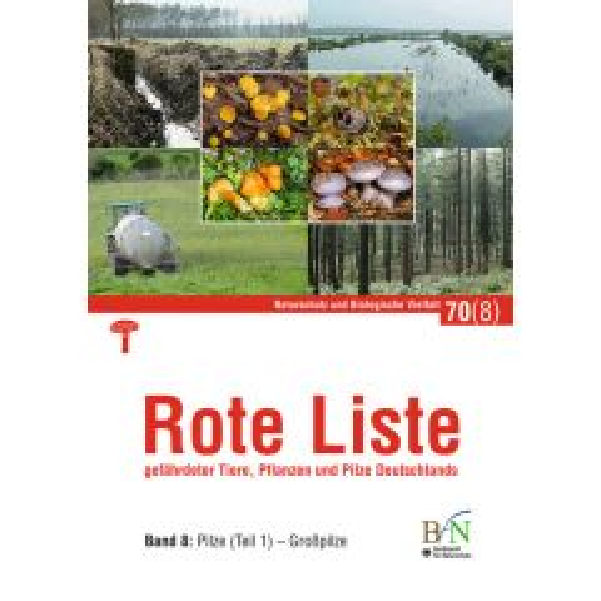 NaBiV Heft 70/8: Rote Liste gefährdeter Tiere, Pflanzen und Pilze Deutschlands - Bd 8: Pilze (Teil 1)-Großpilze