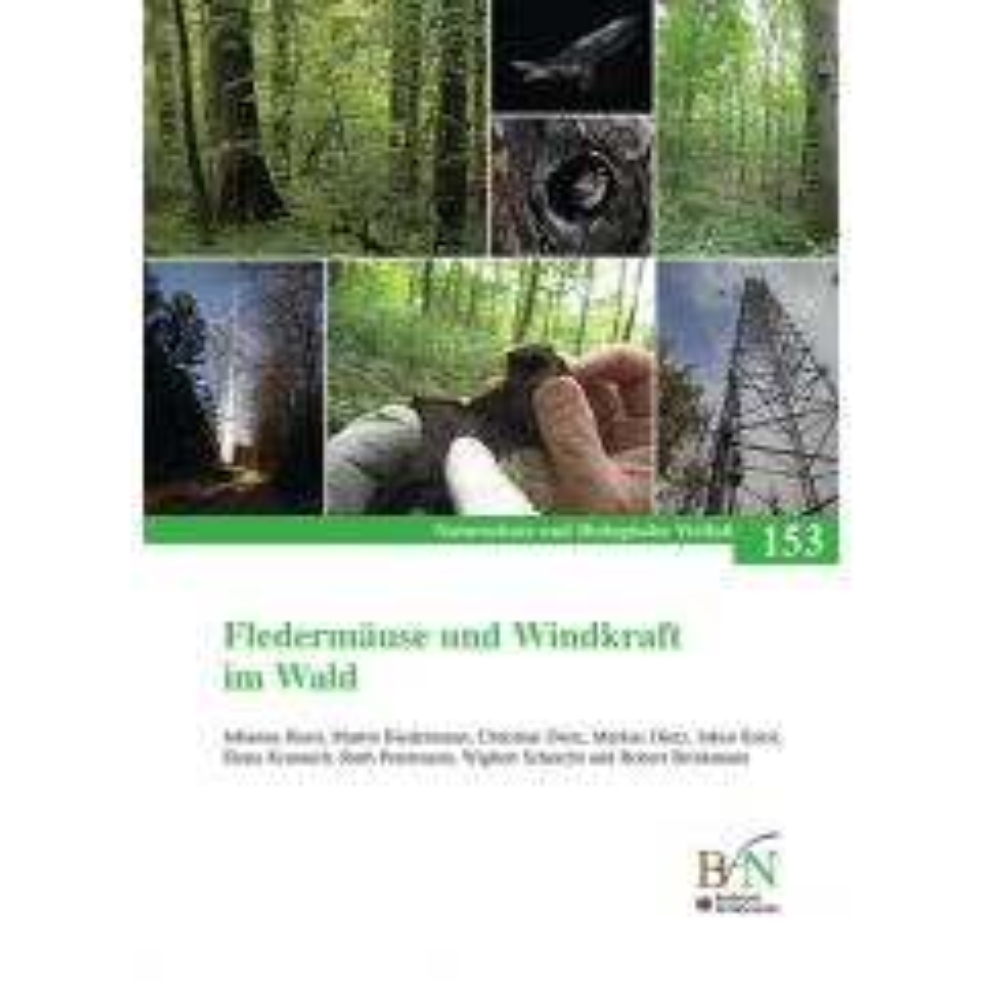 NaBiV Heft 153: Fledermäuse und Windkraft im Wald