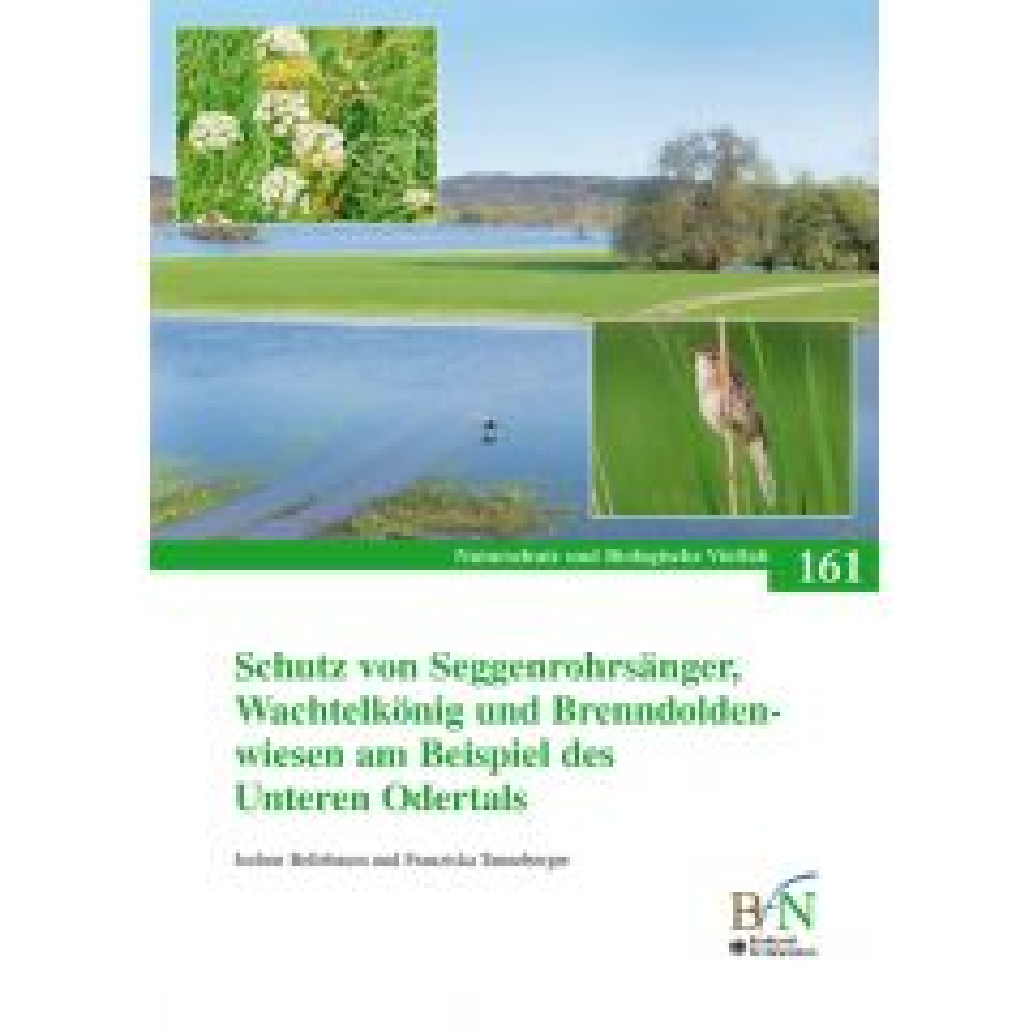 NaBiV Heft 161: Schutz von Seggenrohrsänger, Wachtelkönig und Brenndoldenwiesen am Beispiel des Unteren Odertals